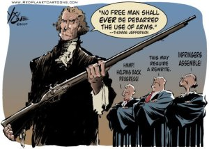20120724-2nd-amendment-cartoon